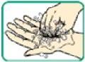 手洗い方法その7