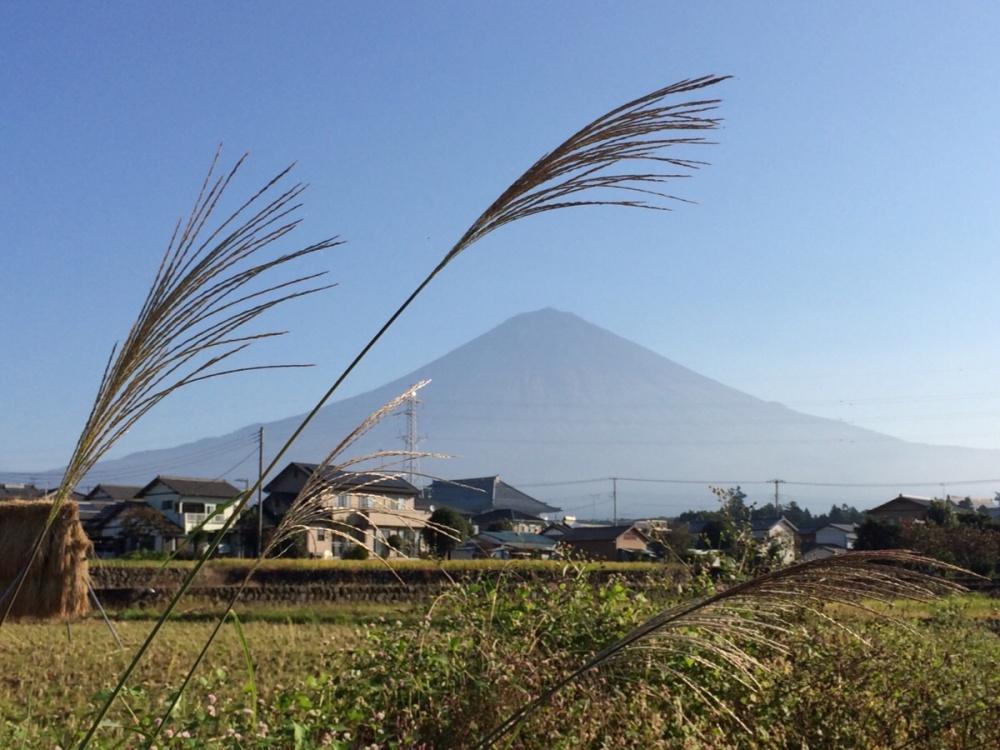 ススキと富士山2016-1019
